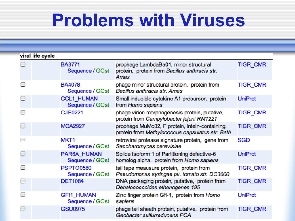 Problems with Viruses