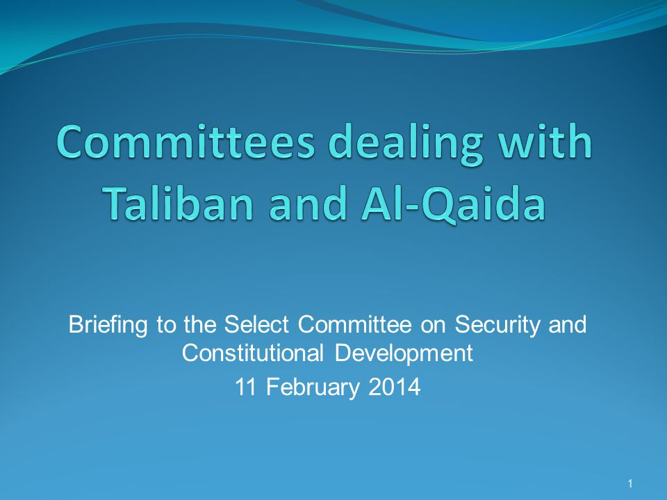 Briefing to the Select Committee on Security and Constitutional Development 11 February 2014 1