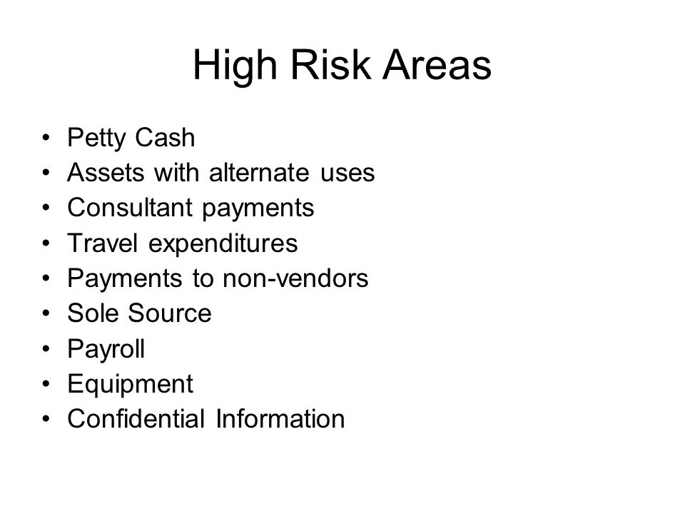 High Risk Areas Petty Cash Assets with alternate uses Consultant payments Travel expenditures Payments to non-vendors Sole Source Payroll Equipment Confidential Information