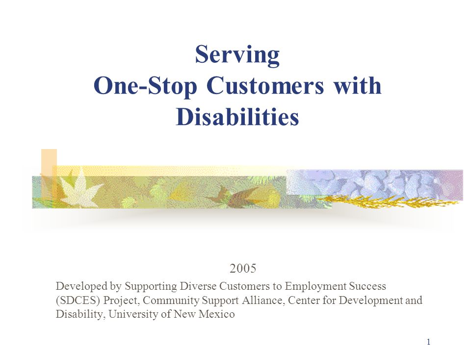 1 Serving One-Stop Customers with Disabilities 2005 Developed by Supporting Diverse Customers to Employment Success (SDCES) Project, Community Support