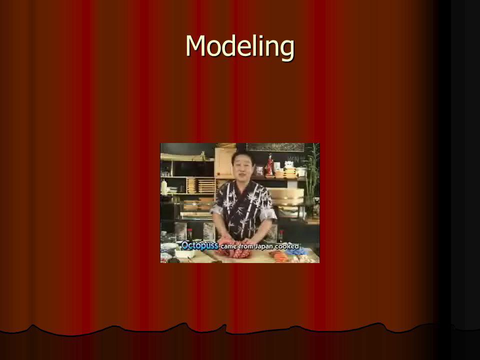 Modeling