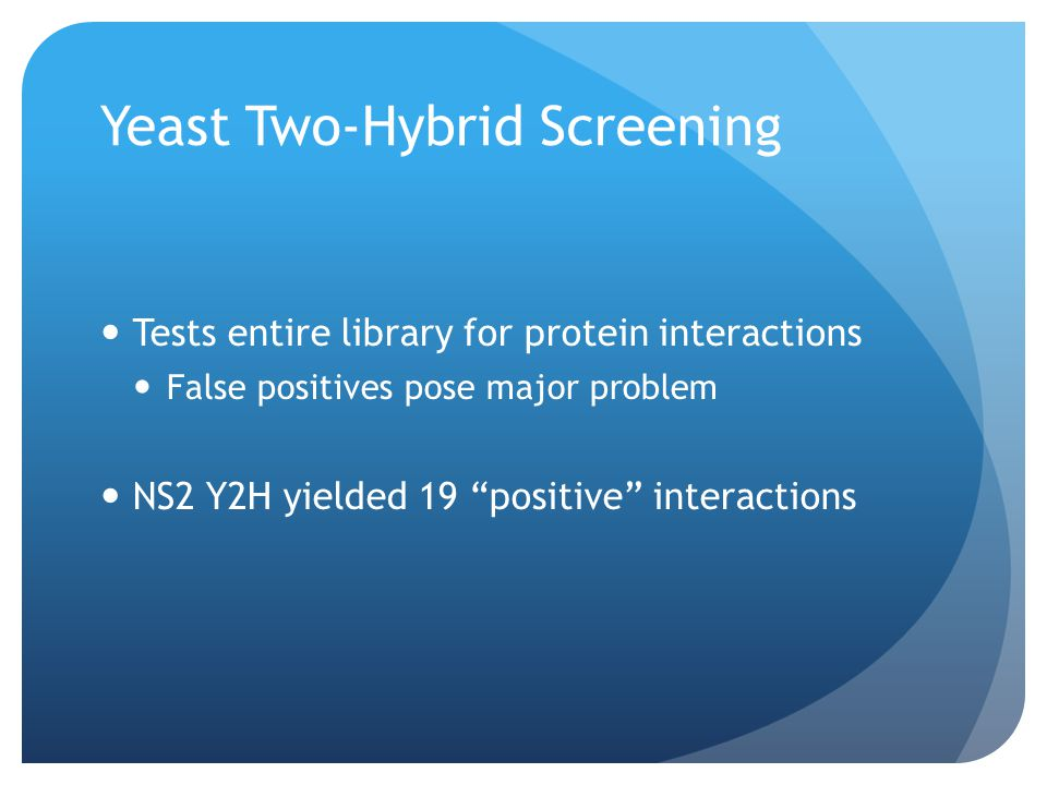 Yeast Two-Hybrid Screening Tests entire library for protein interactions False positives pose major problem NS2 Y2H yielded 19 positive interactions