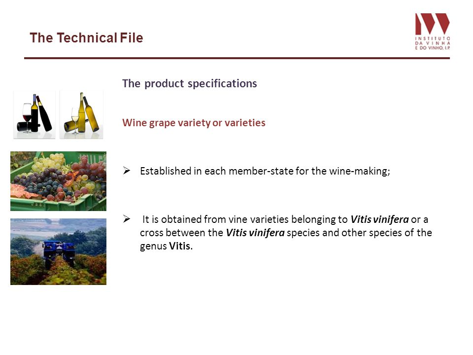 The Technical File The product specifications Wine grape variety or varieties Established in each member-state for the wine-making; It is obtained fro