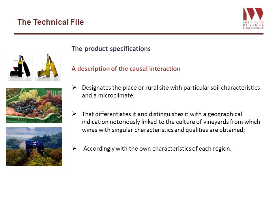 The Technical File The product specifications A description of the causal interaction Designates the place or rural site with particular soil characteristics and a microclimate; That differentiates it and distinguishes it with a geographical indication notoriously linked to the culture of vineyards from which wines with singular characteristics and qualities are obtained; Accordingly with the own characteristics of each region.