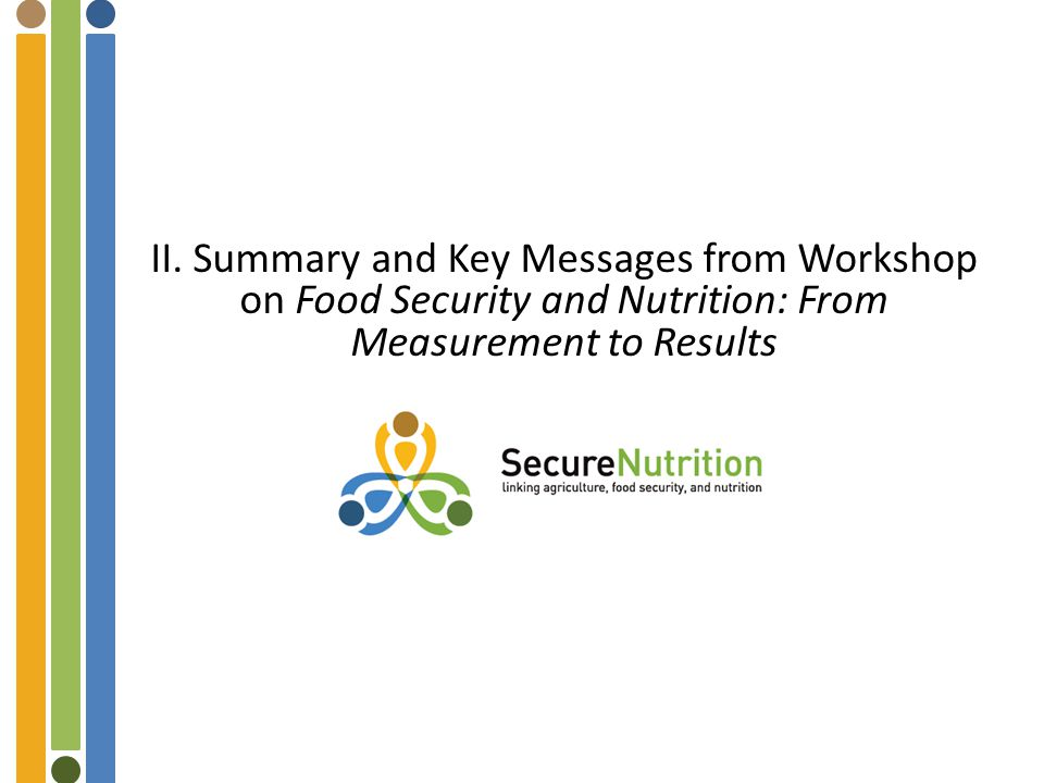 II. Summary and Key Messages from Workshop on Food Security and Nutrition: From Measurement to Results
