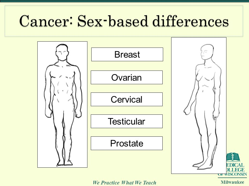 We Practice What We Teach Milwaukee Cancer: Sex-based differences Breast Ovarian Cervical Testicular Prostate