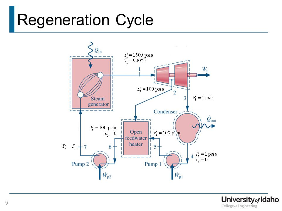 Regeneration Cycle 9