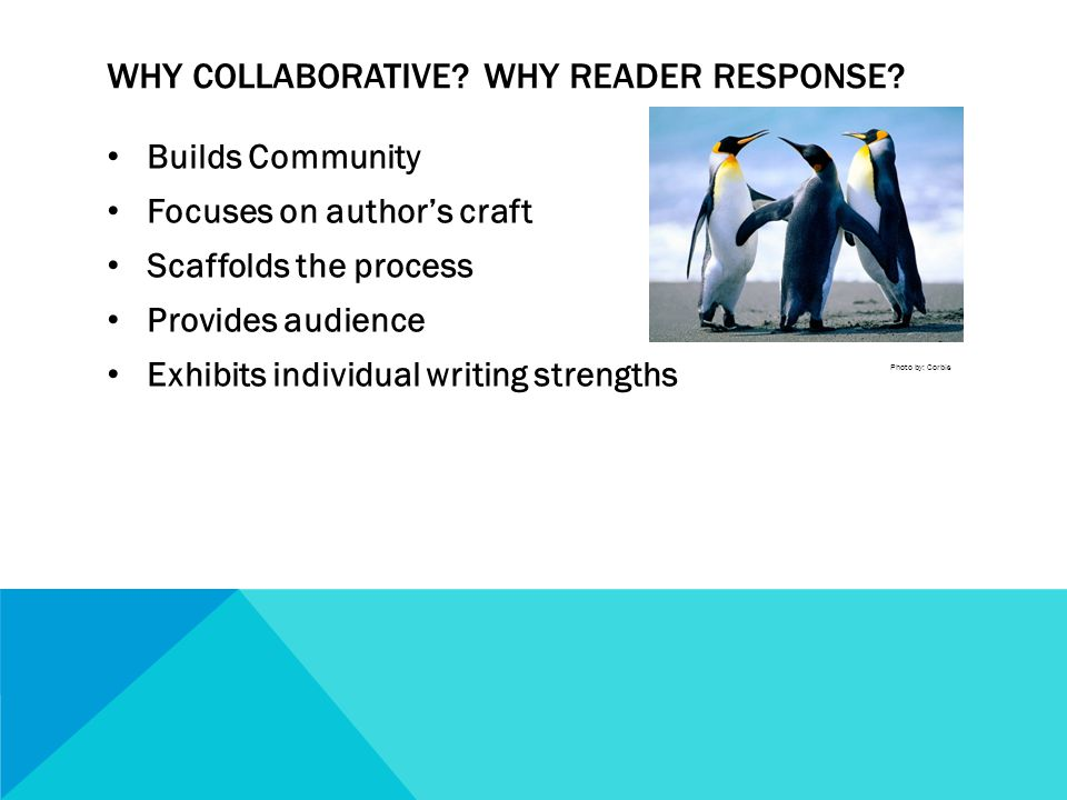 WHY COLLABORATIVE. WHY READER RESPONSE.