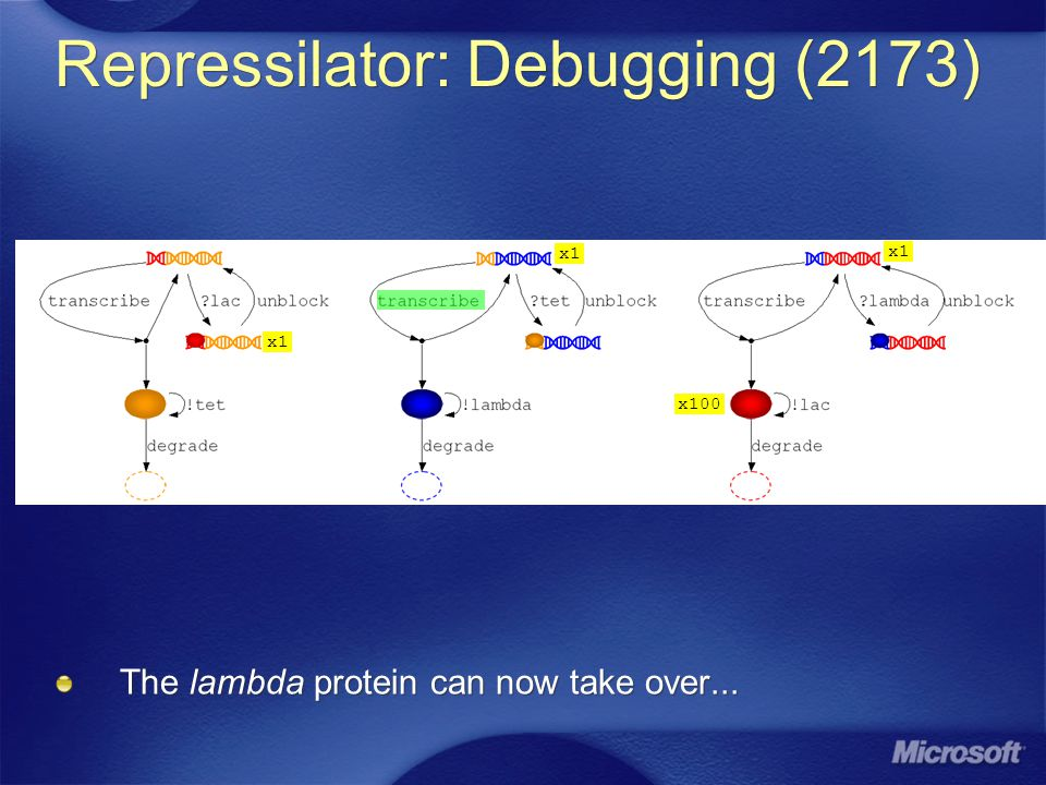 x1 x100 Repressilator: Debugging (2173) The lambda protein can now take over... x1