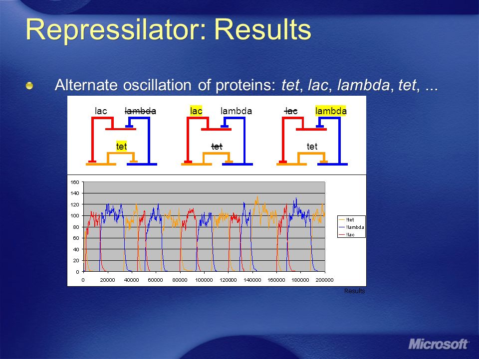 Repressilator: Results Alternate oscillation of proteins: tet, lac, lambda, tet,... tet lambdalac tet lambdalac tet lambdalac