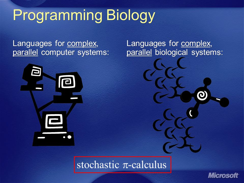 References Graphical Stochastic -calculus: [Phillips and Cardelli, Bioconcur 2005] [Phillips, Cardelli and Castagna, TCSB 2006] SPiM Simulator: [Phillips and Cardelli, Bioconcur 2004] [Phillips, SPiM 2005] Gene Networks: [Blossey, Cardelli, Phillips, TCSB 2006] Antigen Presentation: [Goldstein, MPhil Dissertation 2005] Graphical Stochastic -calculus: [Phillips and Cardelli, Bioconcur 2005] [Phillips, Cardelli and Castagna, TCSB 2006] SPiM Simulator: [Phillips and Cardelli, Bioconcur 2004] [Phillips, SPiM 2005] Gene Networks: [Blossey, Cardelli, Phillips, TCSB 2006] Antigen Presentation: [Goldstein, MPhil Dissertation 2005]