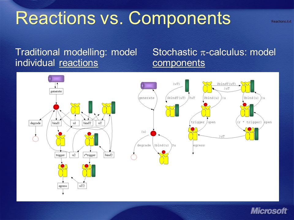 Reactions vs. Components Traditional modelling: model individual reactions Stochastic -calculus: model components
