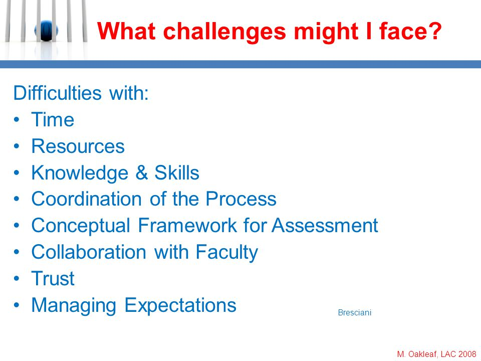 M. Oakleaf, LAC 2008 What challenges might I face? Difficulties with: Time Resources Knowledge & Skills Coordination of the Process Conceptual Framewo