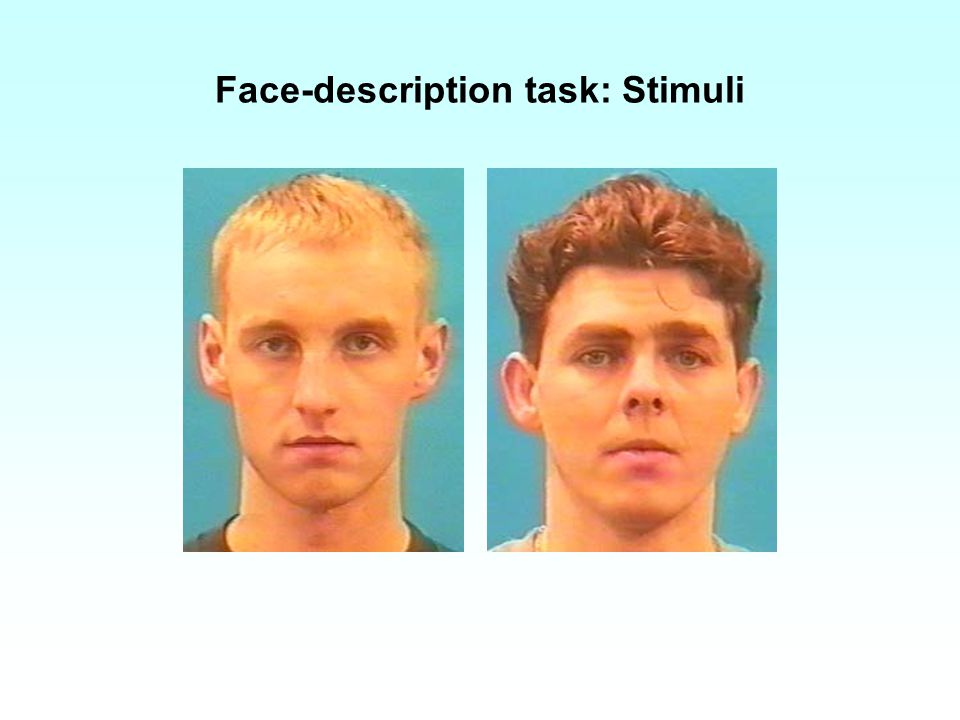 Face-description task: Stimuli