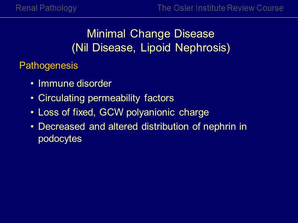 Renal PathologyThe Osler Institute Review Course Minimal Change Disease (Nil Disease, Lipoid Nephrosis) Pathogenesis Immune disorder Circulating perme
