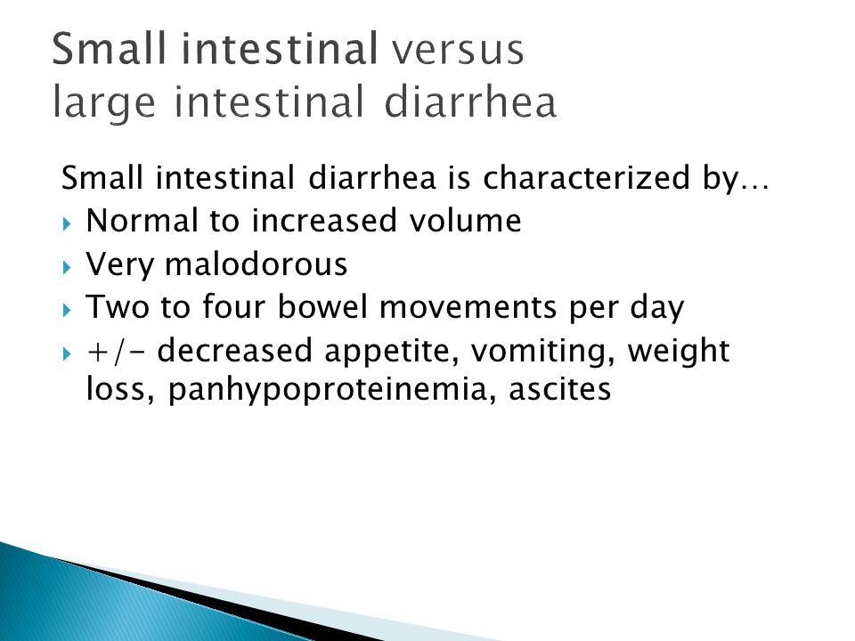 Small intestinal diarrhea is characterized by… Normal to increased volume Very malodorous Two to four bowel movements per day +/- decreased appetite, vomiting, weight loss, panhypoproteinemia, ascites