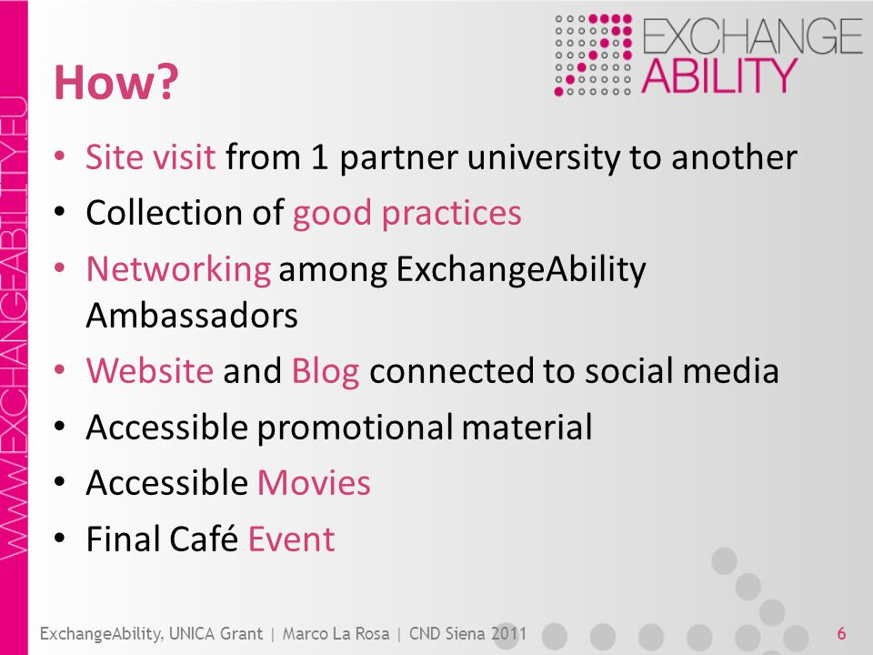 How? Site visit from 1 partner university to another Collection of good practices Networking among ExchangeAbility Ambassadors Website and Blog connec