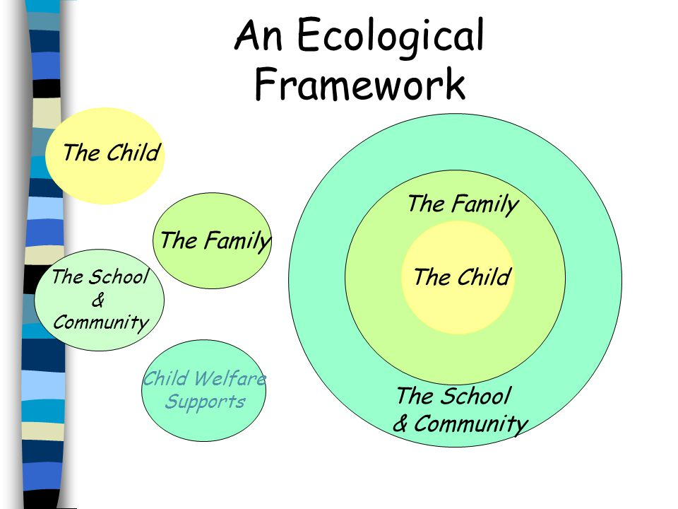 An Ecological Framework The Child The Family The School & Community The Child The Family The School & Community Child Welfare Supports