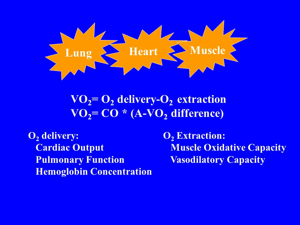 Lung Heart Muscle VO 2 = O 2 delivery-O 2 extraction VO 2 = CO * (A-VO 2 difference) O 2 delivery: Cardiac Output Pulmonary Function Hemoglobin Concen