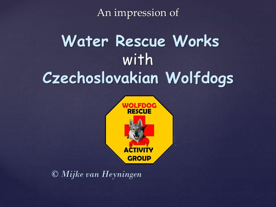 An impression of Water Rescue Works with Czechoslovakian Wolfdogs © Mijke van Heyningen