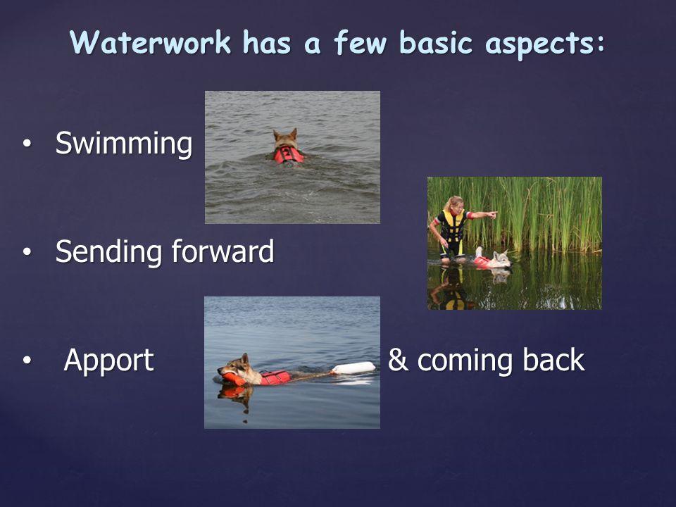 Waterwork has a few basic aspects: Swimming Swimming Sending forward Sending forward Apport & coming back Apport & coming back