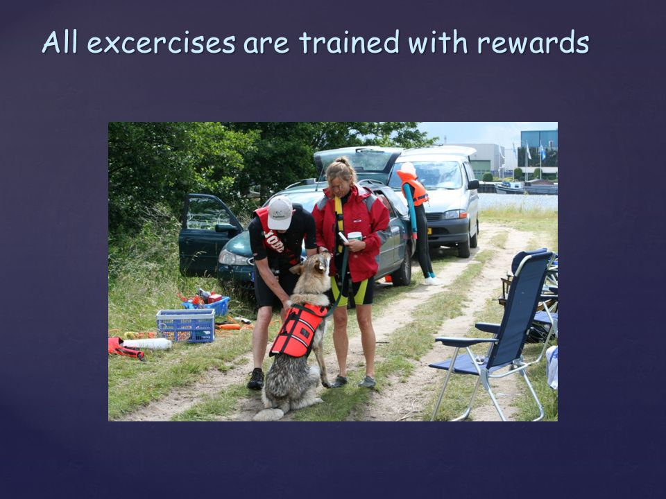 All excercises are trained with rewards