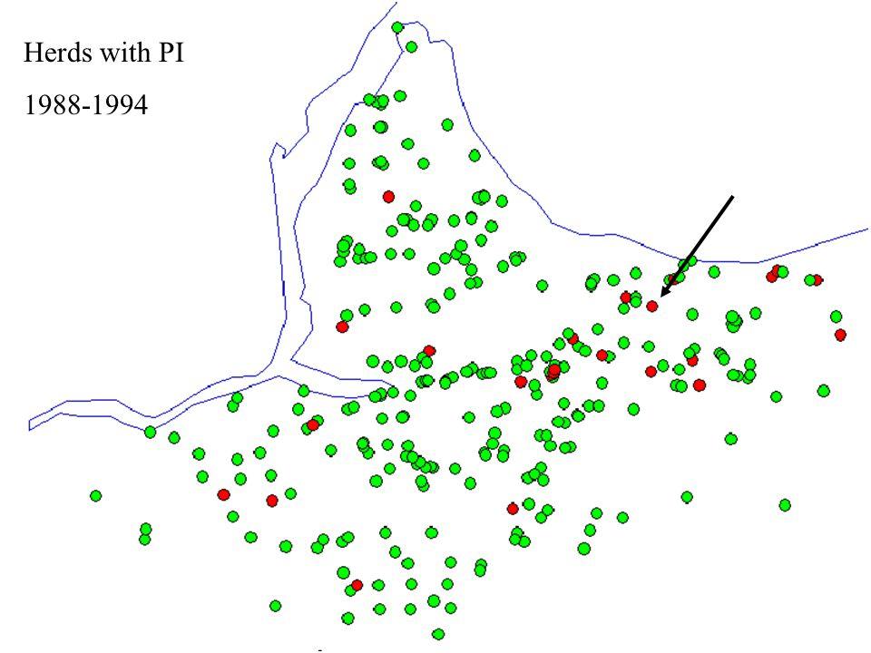 Beef Herds Infected 1999