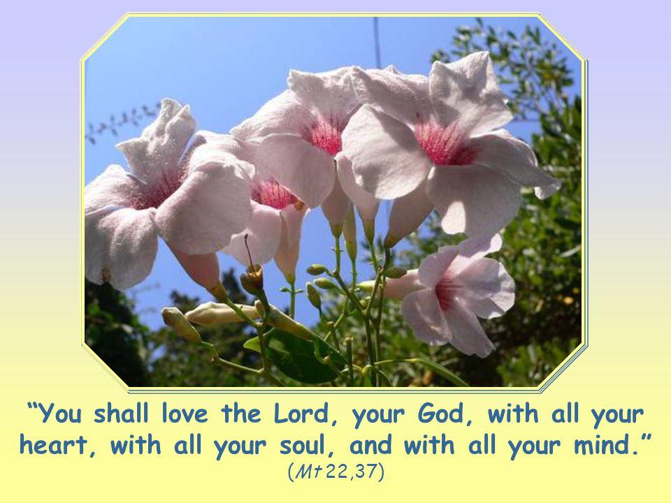Word of Life May 2011