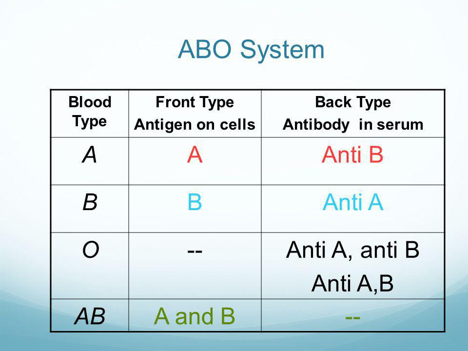 Blood Type BACK TYPE – whats in the serum? Mix 2 drops patient serum with both A and B reagent cells. Agglutination indicates presence of antibody