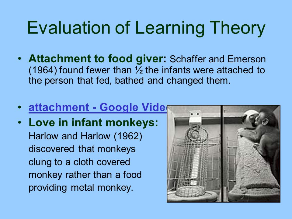 Evaluation of Learning Theory Attachment to food giver: Schaffer and Emerson (1964) found fewer than ½ the infants were attached to the person that fe