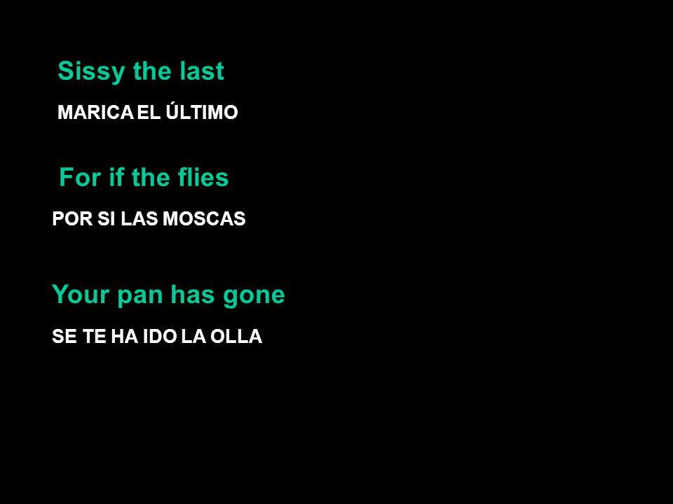 Sissy the last MARICA EL ÚLTIMO For if the flies POR SI LAS MOSCAS SE TE HA IDO LA OLLA Your pan has gone