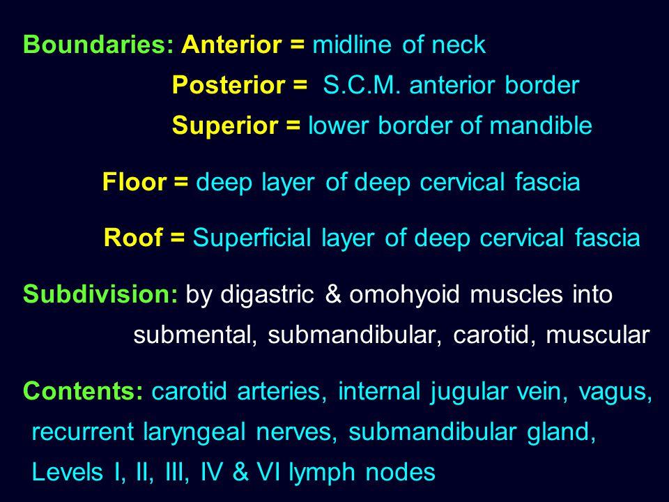 Boundaries: Anterior = midline of neck Posterior = S.C.M. anterior border Superior = lower border of mandible Floor = deep layer of deep cervical fasc