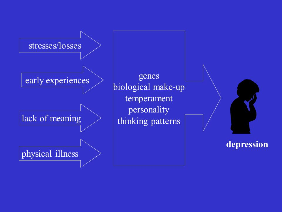 stresses/losses early experiences lack of meaning physical illness genes biological make-up temperament personality thinking patterns depression