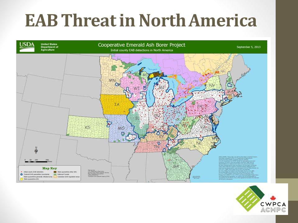 EAB Threat in North America