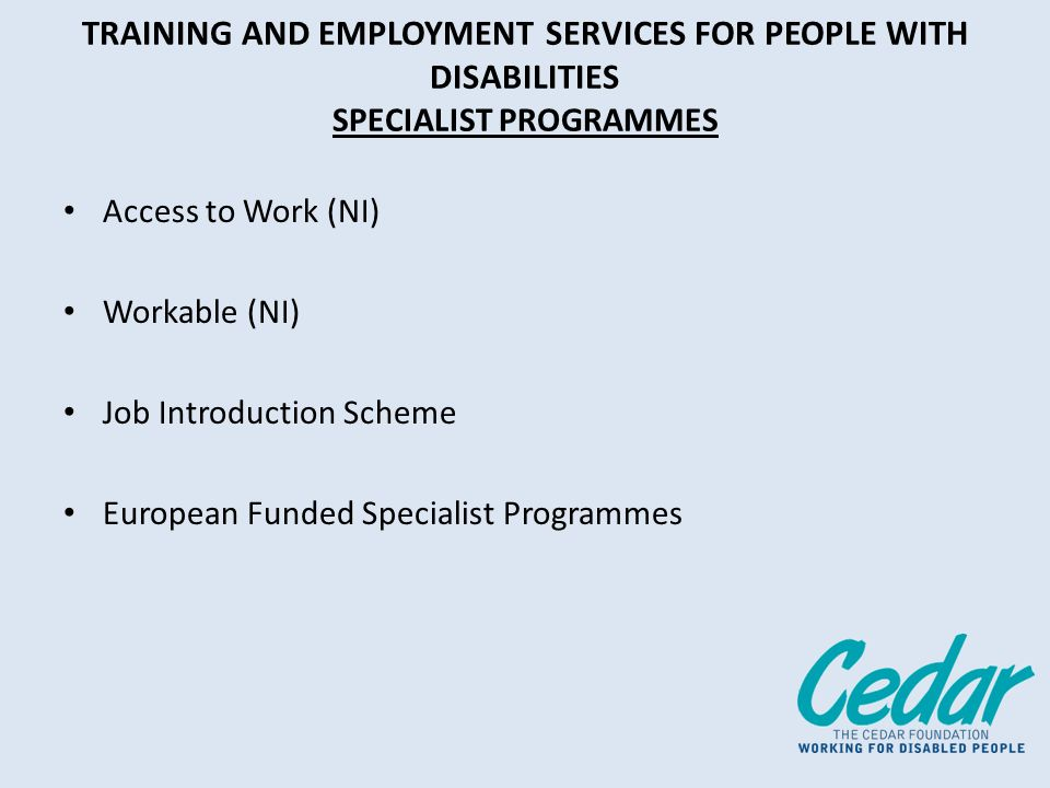 TRAINING AND EMPLOYMENT SERVICES FOR PEOPLE WITH DISABILITIES SPECIALIST PROGRAMMES Access to Work (NI) Workable (NI) Job Introduction Scheme European Funded Specialist Programmes