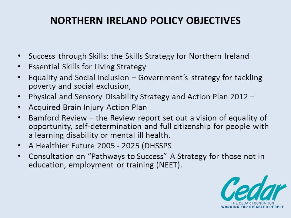 ANALYSIS OF CRITICAL STAKEHOLDER ISSUES UK Government Perspective Northern Ireland Government Perspective Aspirations of People with Disabilities Employers Perspective