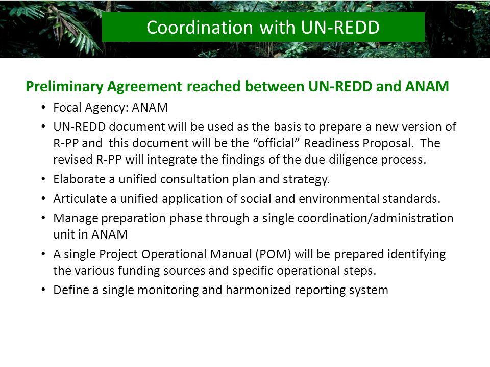 Preliminary Agreement reached between UN-REDD and ANAM Focal Agency: ANAM UN-REDD document will be used as the basis to prepare a new version of R-PP and this document will be the official Readiness Proposal.