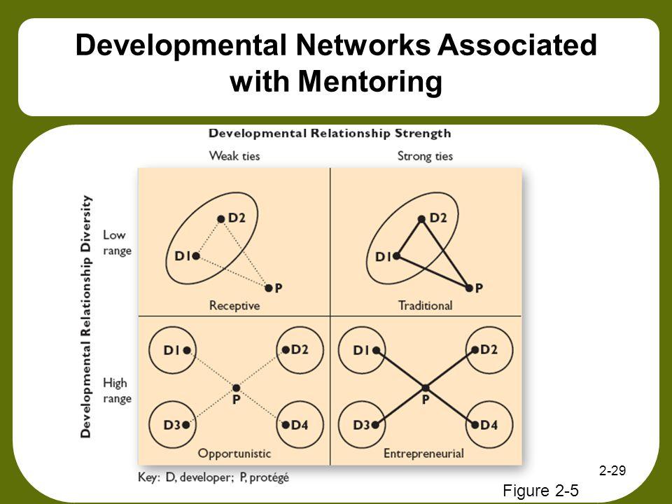 2-29 Developmental Networks Associated with Mentoring Figure 2-5