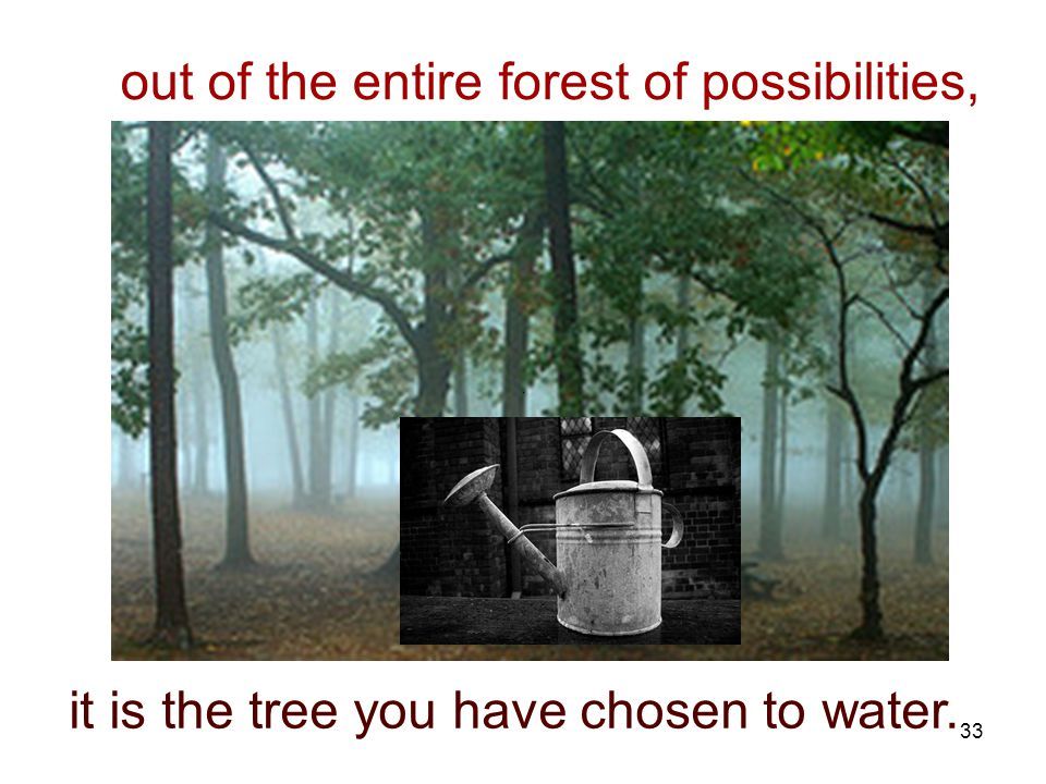 33 out of the entire forest of possibilities, it is the tree you have chosen to water.
