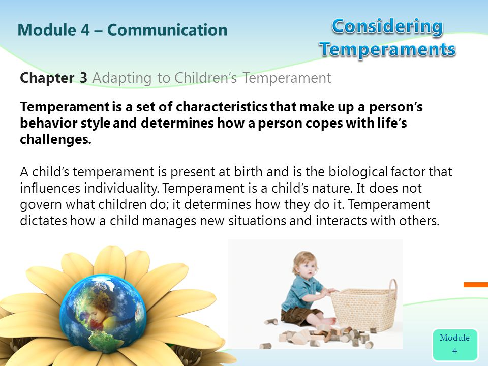 Although personality and temperament are often considered the same thing, they are separate concepts.