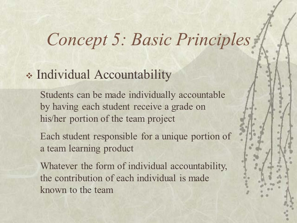 Concept 5: Basic Principles Individual Accountability Students can be made individually accountable by having each student receive a grade on his/her