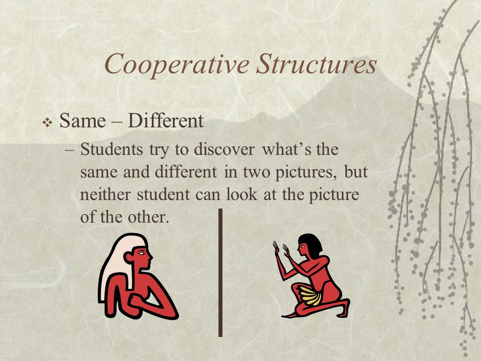Cooperative Structures Same – Different –Students try to discover whats the same and different in two pictures, but neither student can look at the pi