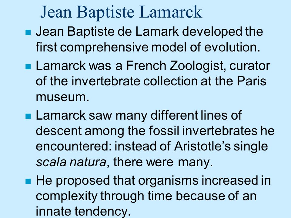 Jean Baptiste Lamarck n Jean Baptiste de Lamark developed the first comprehensive model of evolution. n Lamarck was a French Zoologist, curator of the