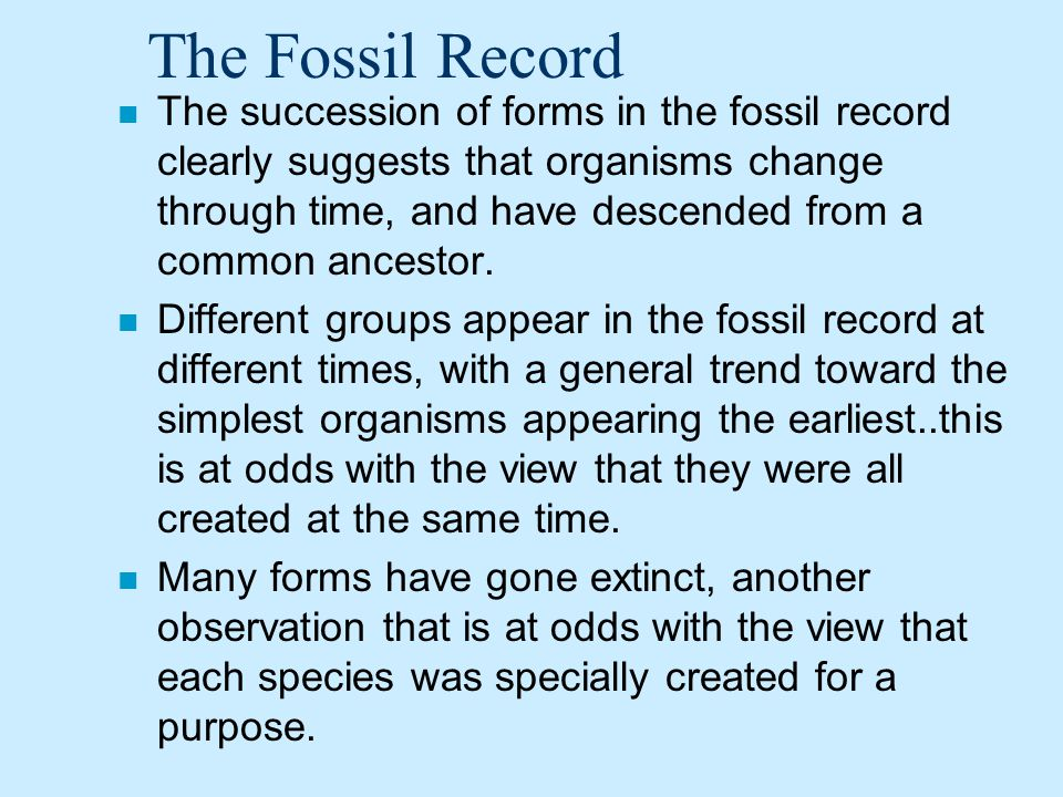 The Fossil Record n The succession of forms in the fossil record clearly suggests that organisms change through time, and have descended from a common