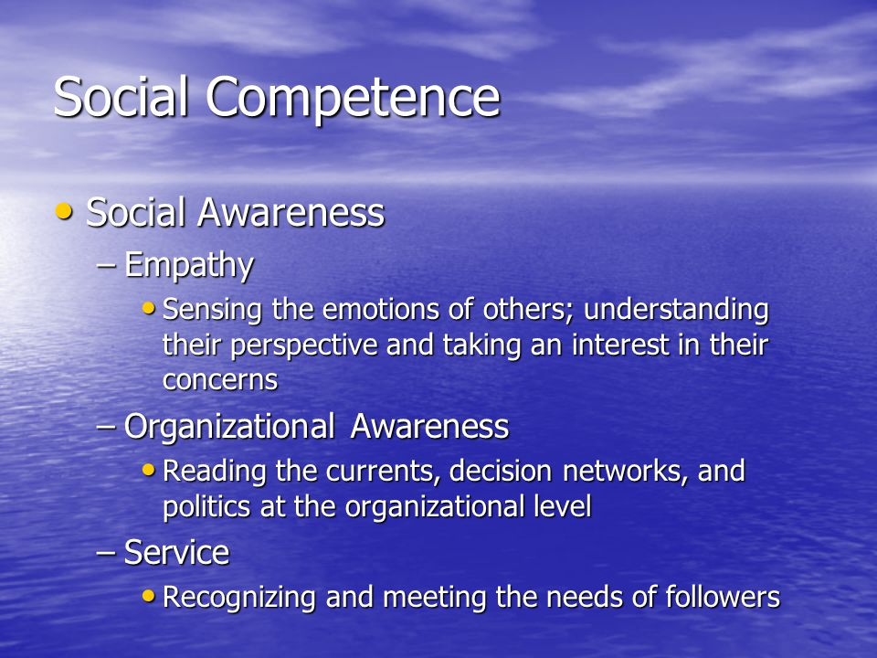 Social Competence Social Awareness Social Awareness –Empathy Sensing the emotions of others; understanding their perspective and taking an interest in their concerns Sensing the emotions of others; understanding their perspective and taking an interest in their concerns –Organizational Awareness Reading the currents, decision networks, and politics at the organizational level Reading the currents, decision networks, and politics at the organizational level –Service Recognizing and meeting the needs of followers Recognizing and meeting the needs of followers