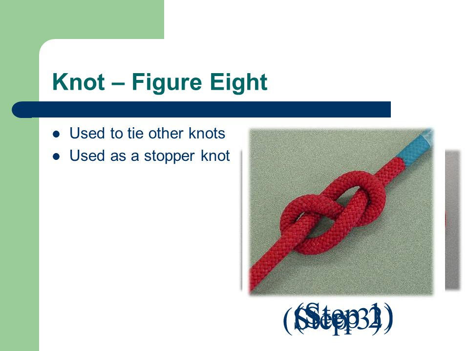 Knot – Figure Eight Used to tie other knots Used as a stopper knot (Step 1) (Step 2) (Step 3)