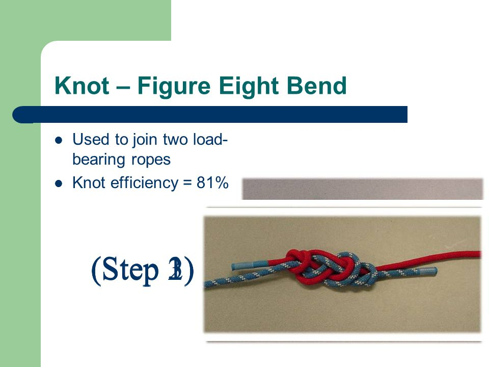 Knot – Figure Eight Bend Used to join two load- bearing ropes Knot efficiency = 81% (Step 1) (Step 2) (Step 3)