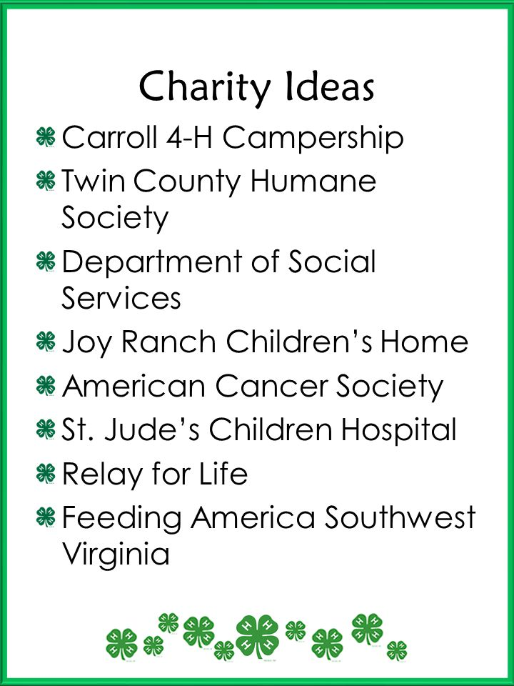 Charity Ideas Carroll 4-H Campership Twin County Humane Society Department of Social Services Joy Ranch Childrens Home American Cancer Society St. Jud