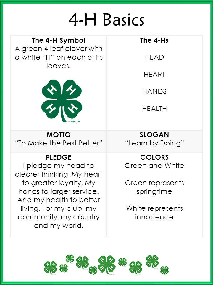 4-H Basics The 4-H Symbol A green 4 leaf clover with a white H on each of its leaves. The 4-Hs HEAD HEART HANDS HEALTH MOTTO To Make the Best Better S