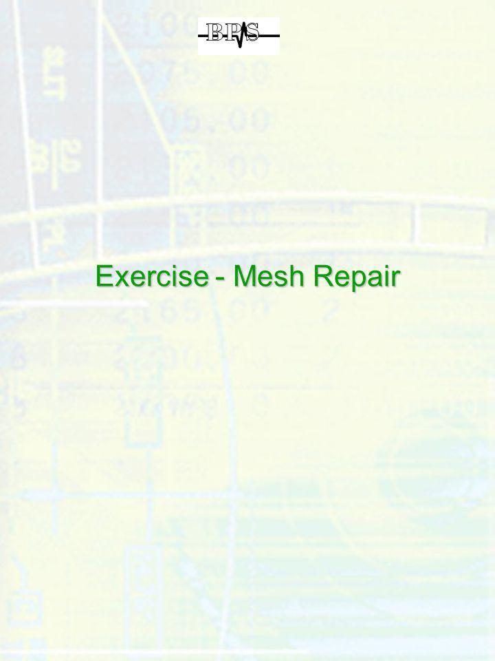 Exercise - Mesh Repair